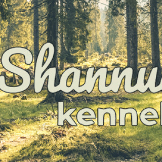 Blogg | Shannuq's kennel