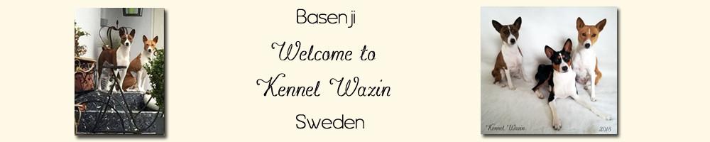 Kennel Wazin