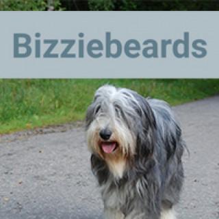 Bizziebeards