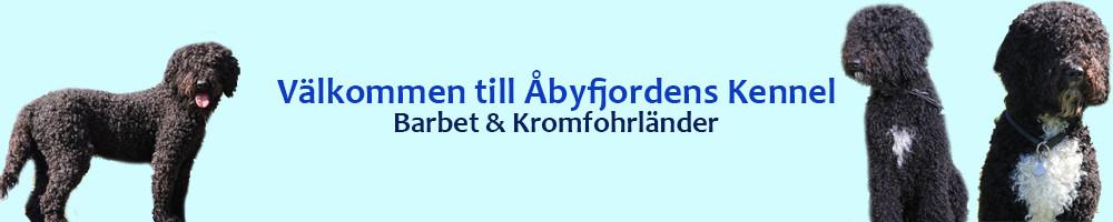 Åbyfjordens Kennel