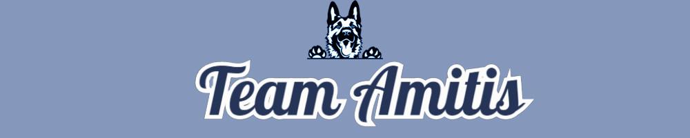 Team Amitis